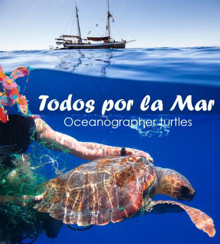 proyecto tortugas