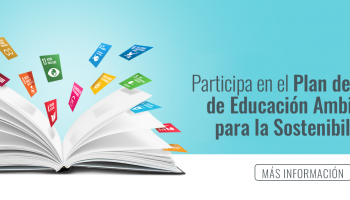 Link to PLAN DE ACCIÓN DE EDUCACIÓN AMBIENTAL (PAEAS)